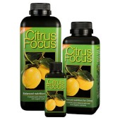 Citrus Focus 100ml  -Home Hydro, Rugby, Warwickshire