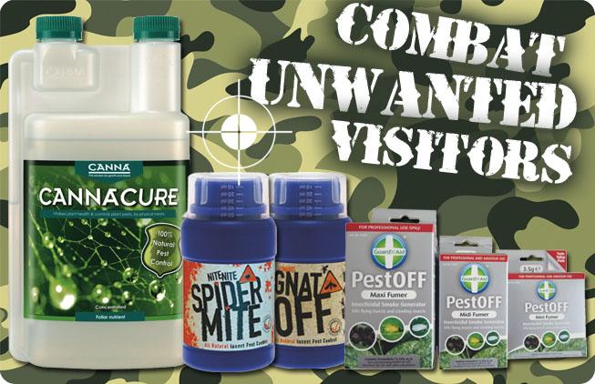 Combat Pest Problems!